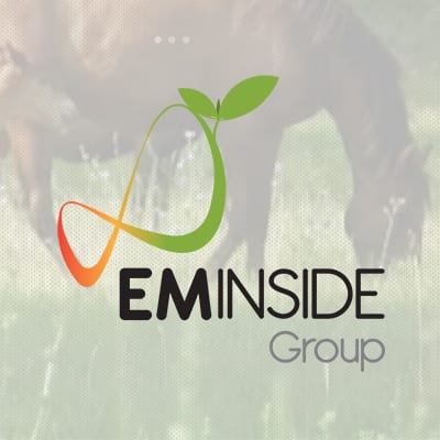 EM INSIDE GROUP - Chevaux