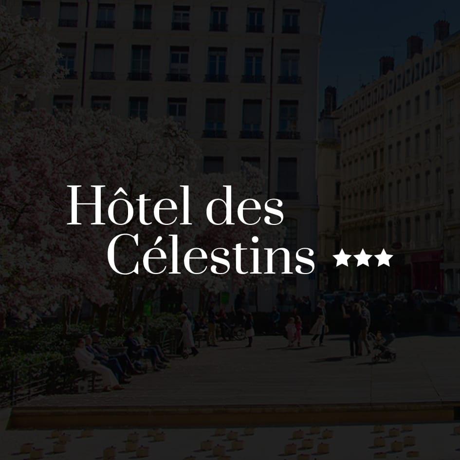 HOTEL DES CELESTINS - Hôtel / Tourisme